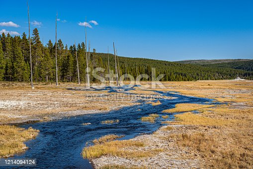 Frost covered meadow located by the Lower Geyser Basin in Yellowstone National Park,Wyoming, USA,Nikon D3x