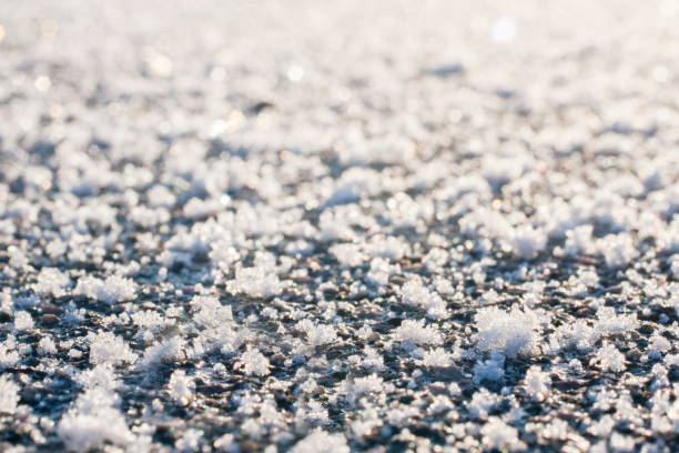 Frost on the ground close up. stock photo