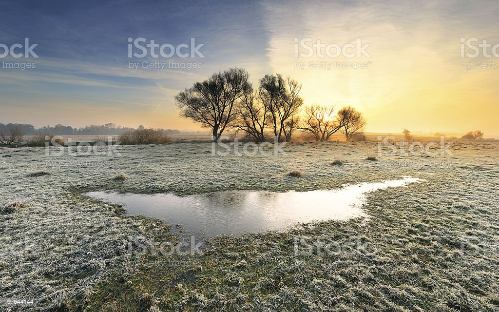 Frosted autumn royalty-free stock photo