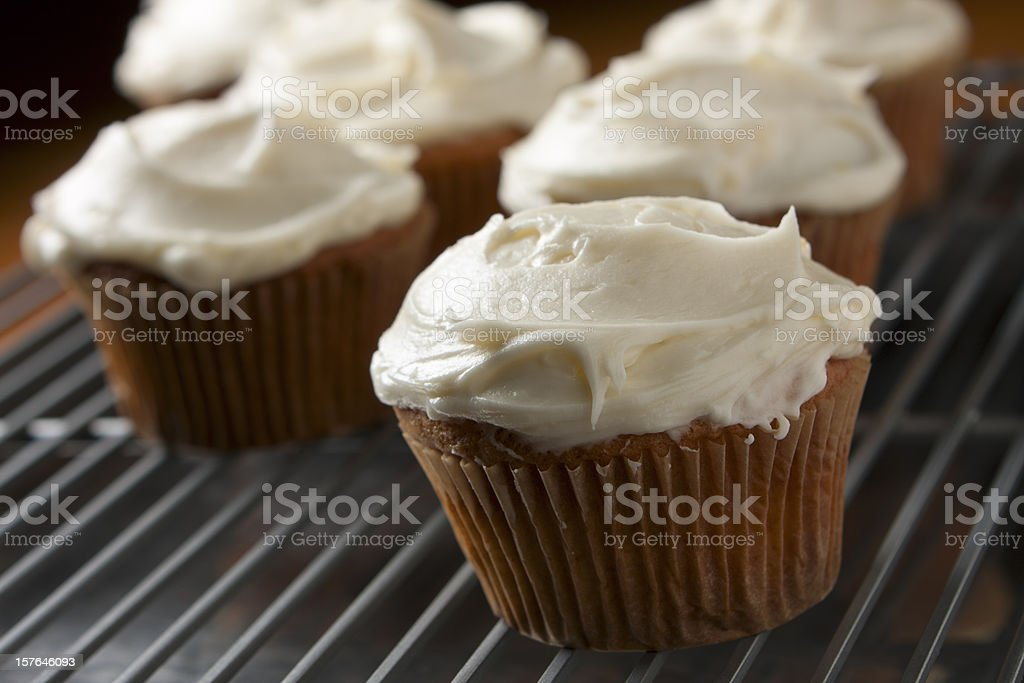 Frosted Cupcakes stock photo