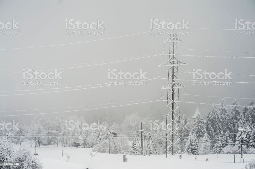 Frosted electricity poles and trees stock photo