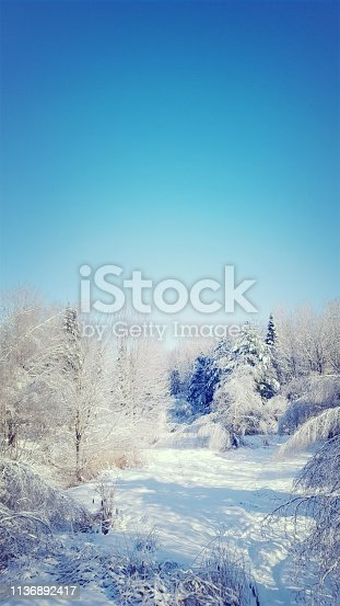 istock Frosted landscape (photo4) 1136892417