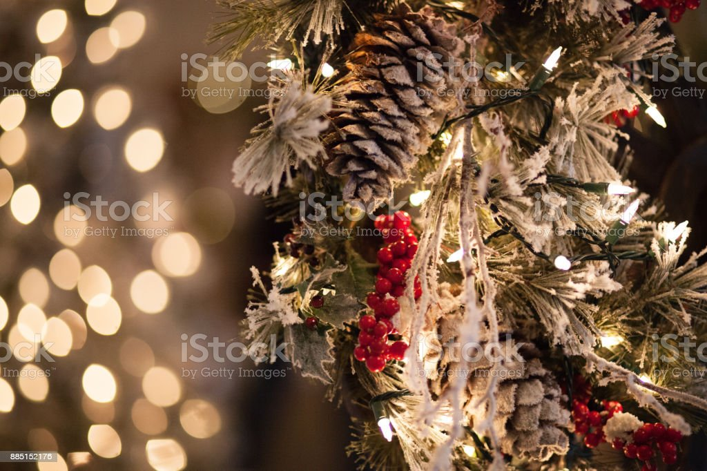 Frosted Pine Cones and Berries With Bright Background Lights stock photo