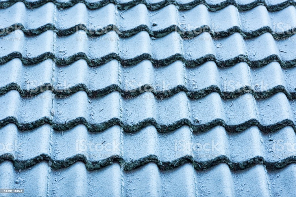 Frosted roof tiles on a morning in winter stock photo
