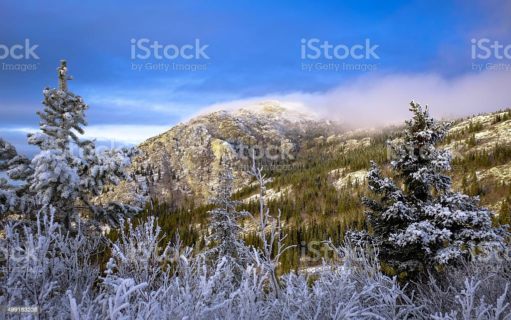 Frosted Winter Mountain Top stock photo