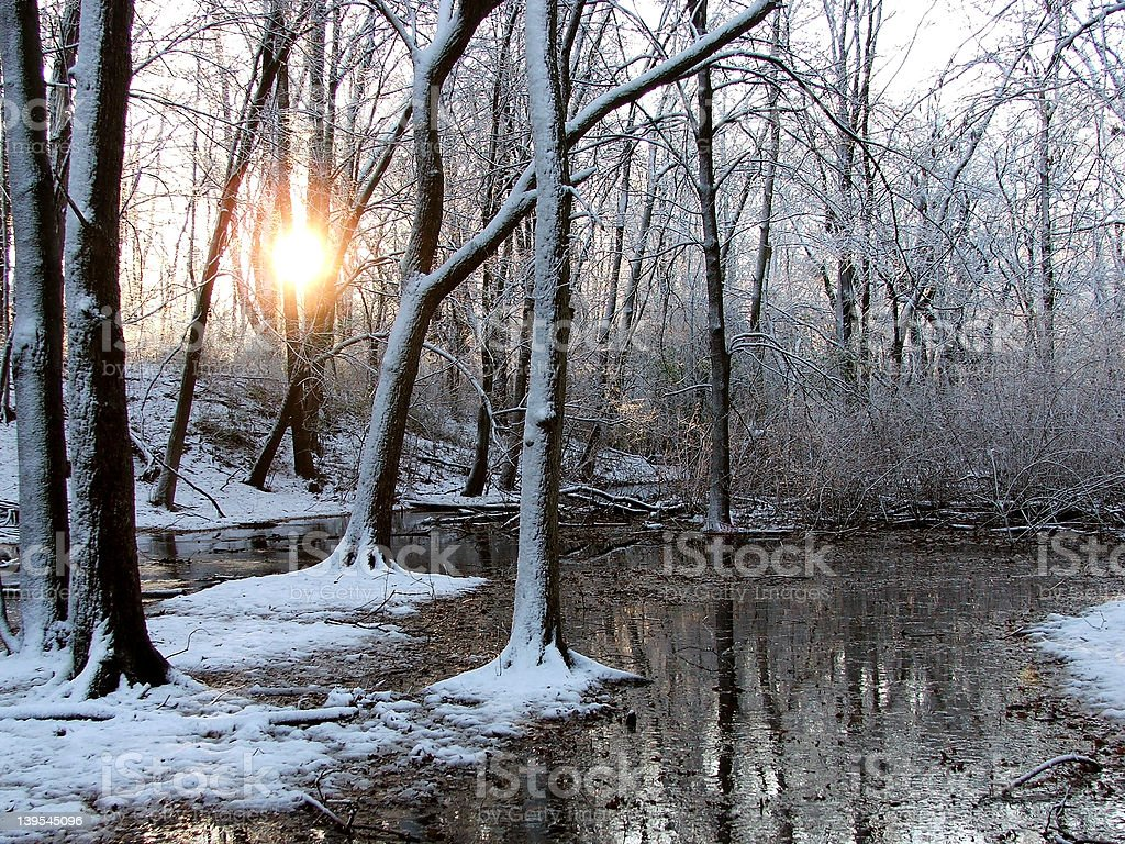 Frosty Creek Morning royalty-free stock photo