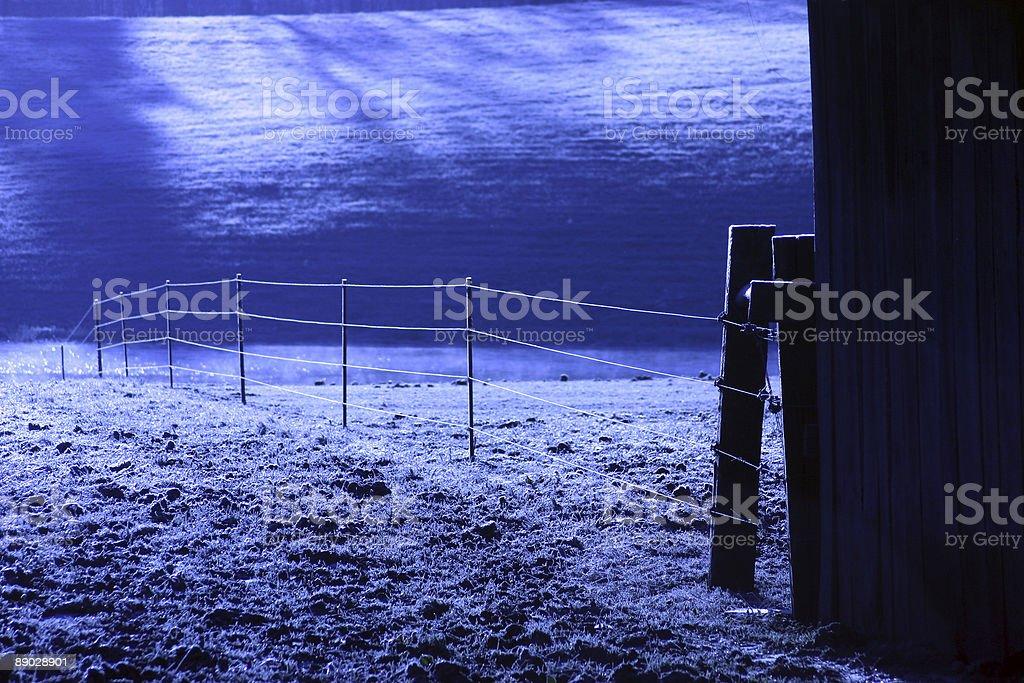 frosty fence blue royalty-free stock photo