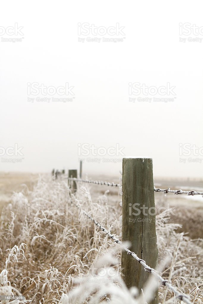 Frosty Fence royalty-free stock photo