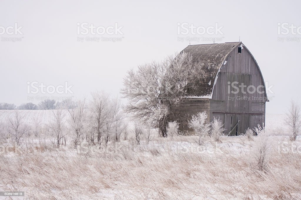 Frosty Iowa Morning in Farm Country stock photo