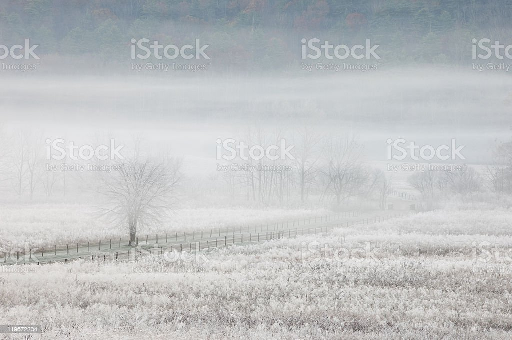 Frosty morning in Cades Cove, Great Smoky Mountains National Park royalty-free stock photo