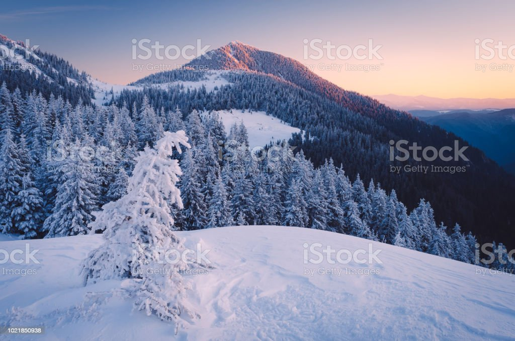 Frosty morning in mountains stock photo