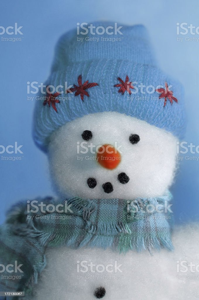 Frosty royalty-free stock photo
