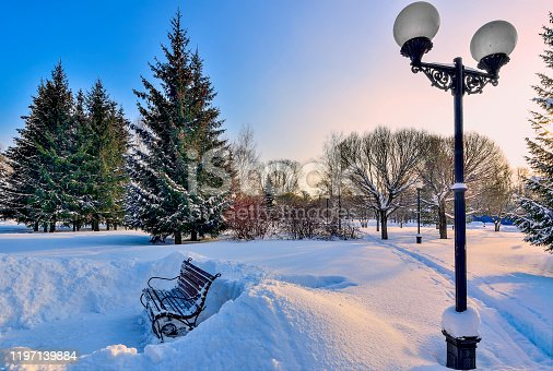 646012098 istock photo Frosty pink morning in winter snowy city park 1197139884