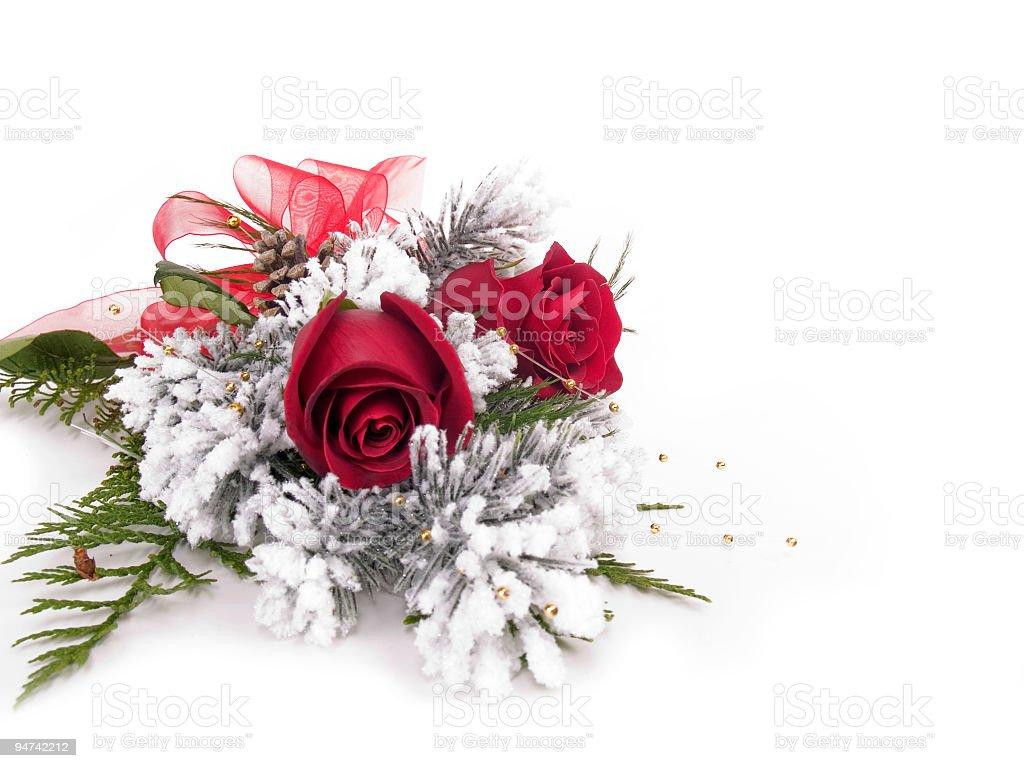 Frosty Roses stock photo