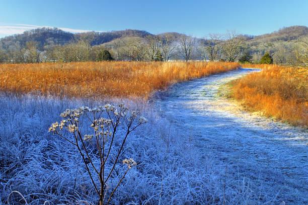 Frosty Trail stock photo
