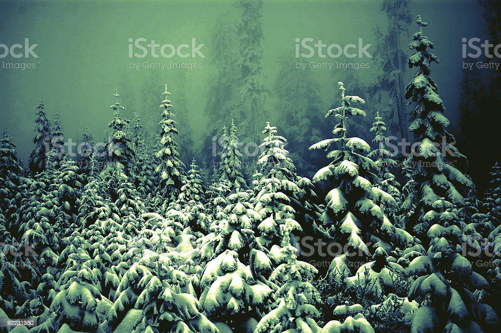 Frosty - Winter Wonderland 4 royalty-free stock photo
