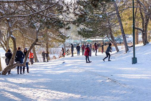냉동된 Abant 호수 볼 루 터키에서 Golcuk 국립 공원에서 1월에 대한 스톡 사진 및 기타 이미지