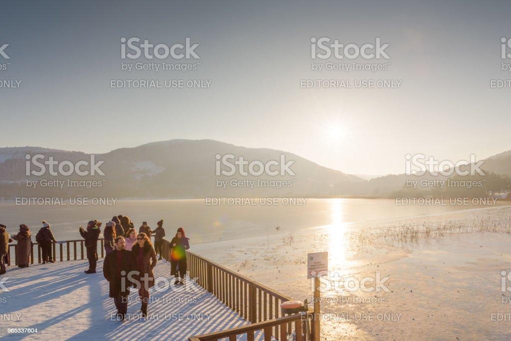 Frozen Abant lake in Golcuk National Park in Bolu,Turkey - Zbiór zdjęć royalty-free (Badanie)