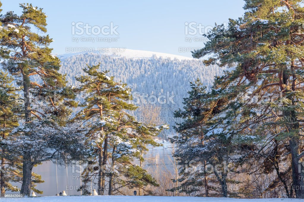 Frozen Abant lake in Golcuk National Park in Bolu,Turkey royalty-free stock photo