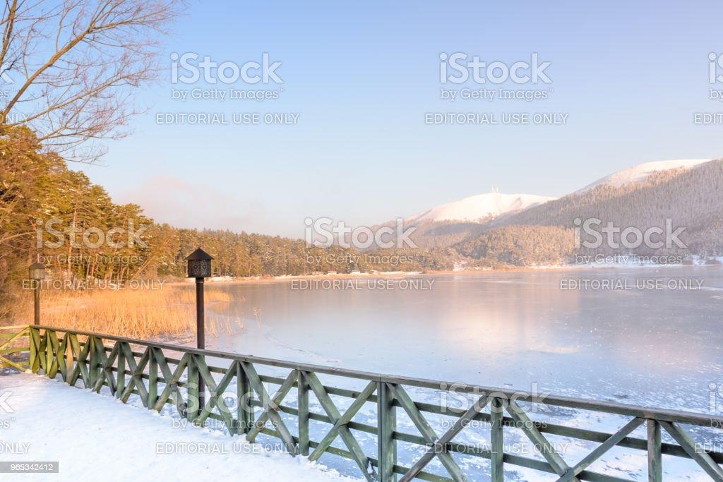 土耳其博盧格爾居克國家公園冷凍 Abant 湖 - 免版稅一月圖庫照片