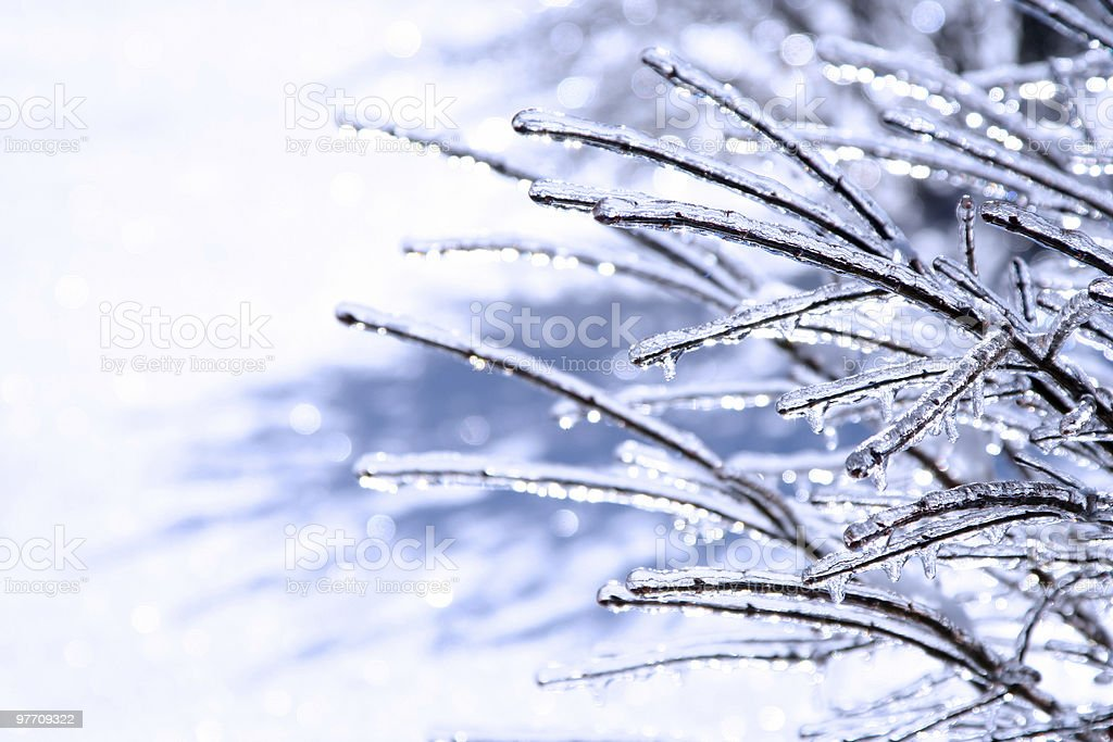 Frozen and beautiful 6 royalty-free stock photo