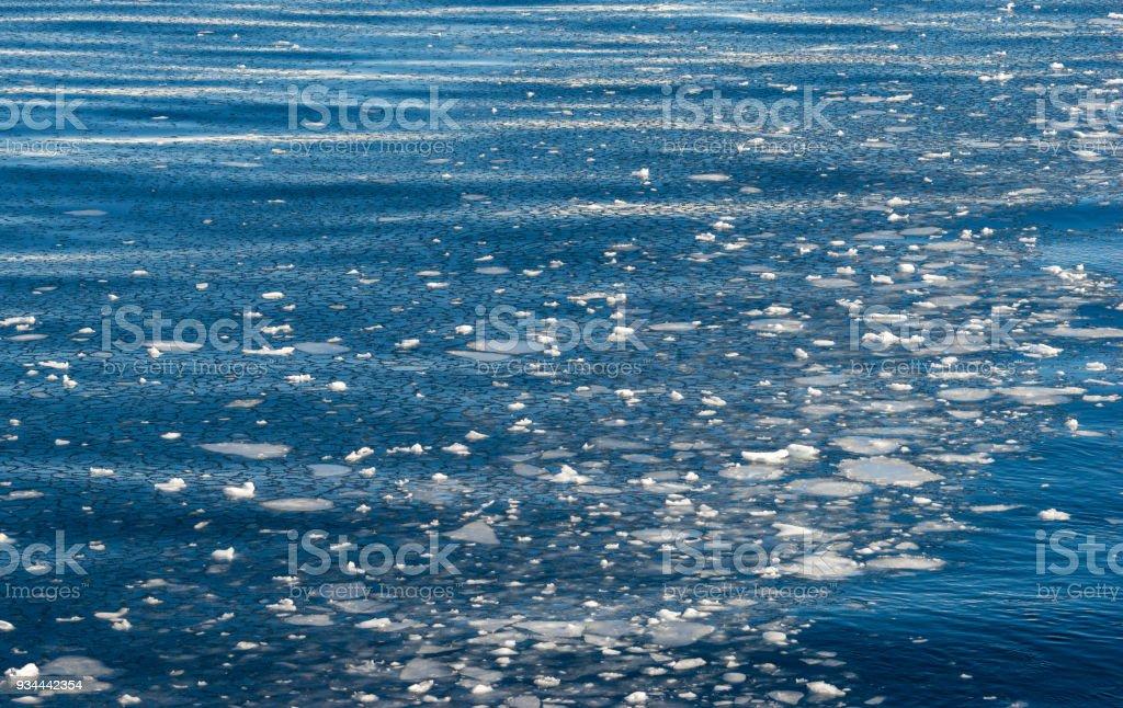 Frozen Antarctic Ocean with Pancake Ice stock photo