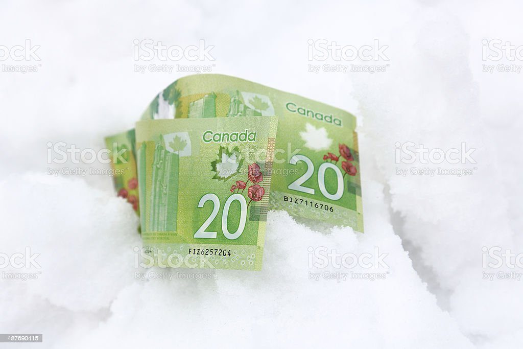 Frozen Assets royalty-free stock photo