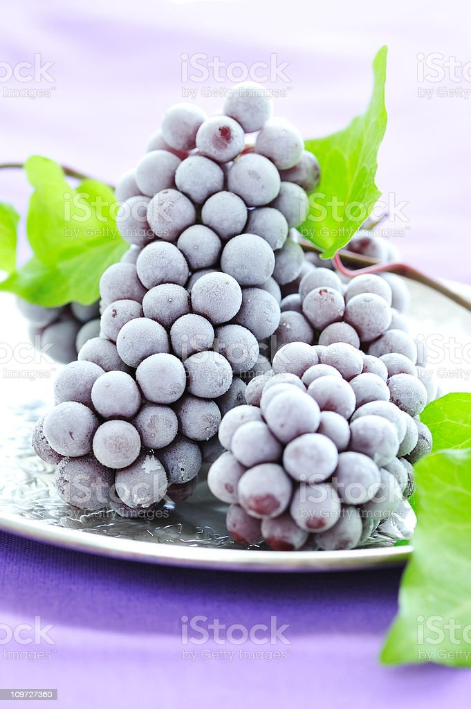 Frozen Champagne  Grape royalty-free stock photo