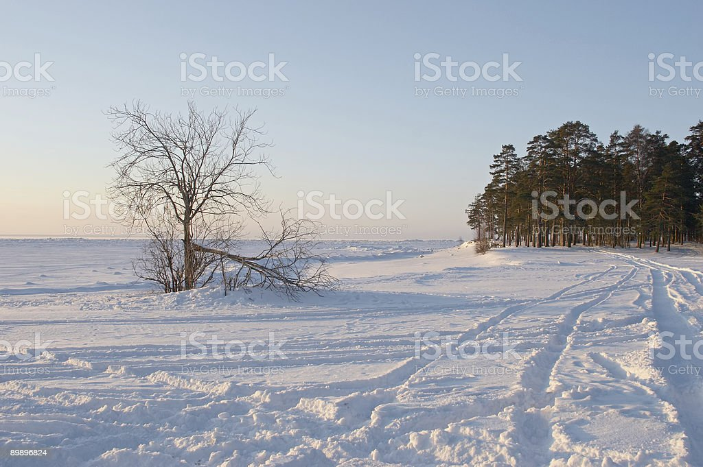 frozen coast royalty-free stock photo
