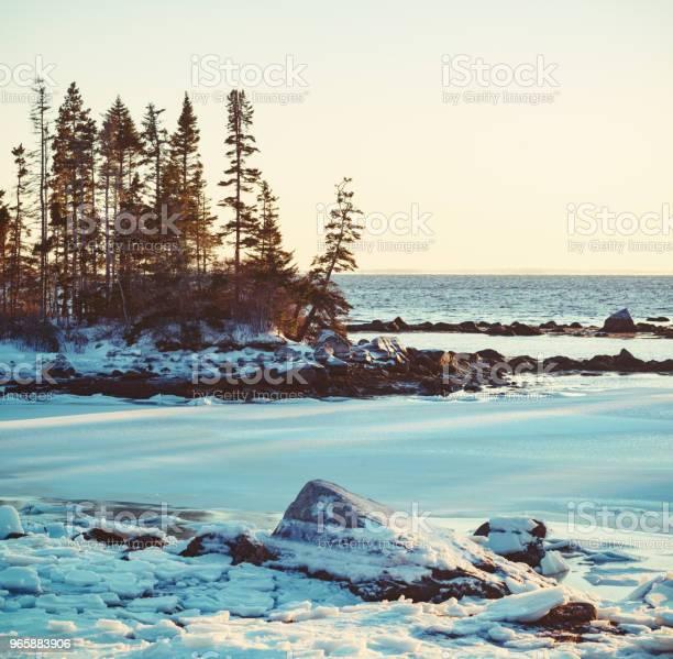 Frozen Coastline - Fotografias de stock e mais imagens de América do Norte