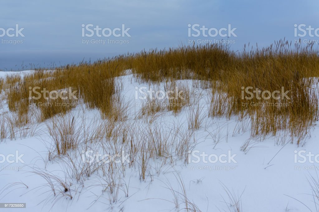 frozen country side by the sea stock photo