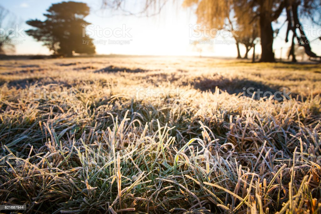 Frozen farm dawn stock photo