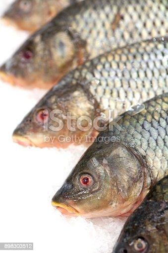 635931692istockphoto Frozen fish. Freshfish market. Gilt-head bream. Fish sale in market. Sea bream fish on ice. Fresh fish on ice for sale at market. Bunch of raw frozen fish on ice. 898303512