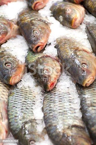 635931692istockphoto Frozen fish. Freshfish market. Gilt-head bream. Fish sale in market. Sea bream fish on ice. Fresh fish on ice for sale at market. Bunch of raw frozen fish on ice. 898305268