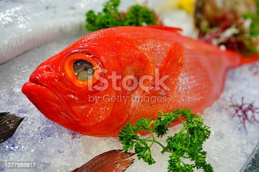 Close-up Fresh Red Snapper on Ice