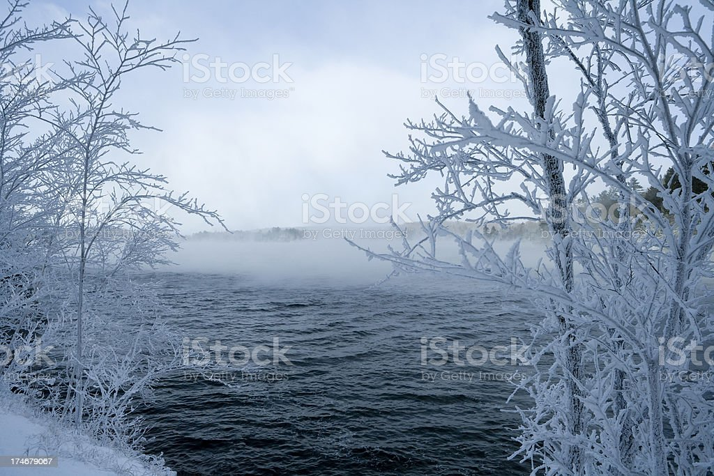 Frozen Fog royalty-free stock photo