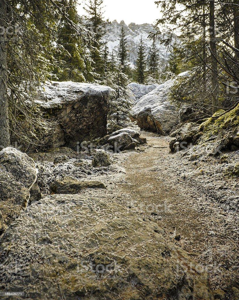 Frozen footpath stock photo