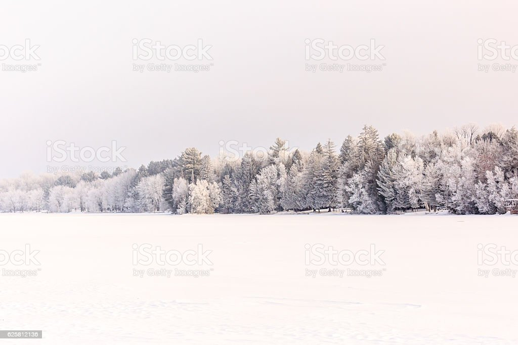 Frozen Forest by River stock photo