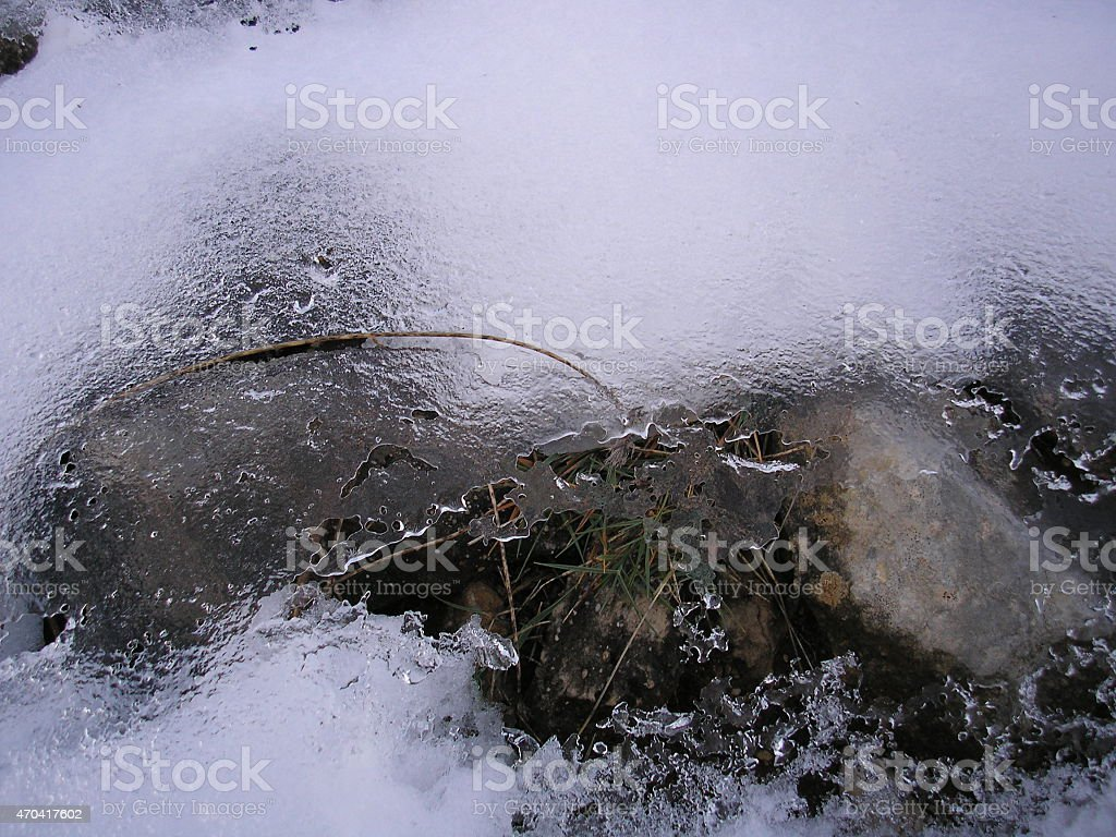 frozen grass, ice, tree, grass, winter, mountain, spain stock photo