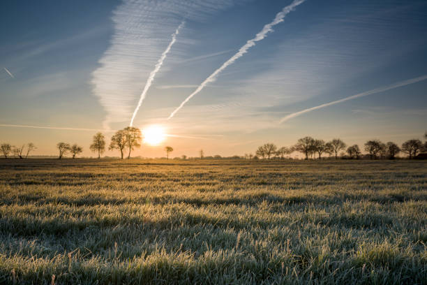 Frozen grass on pasture in fog at sunrise Taken in Priemelsfehn, Friedeburg, Wittmund, Ostfriesland, Lower Saxony, Germany lower saxony stock pictures, royalty-free photos & images