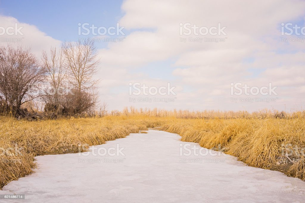 Frozen Grassland Creek foto stock royalty-free