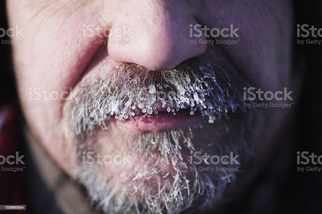 frozen gray beard and mustache royalty-free stock photo