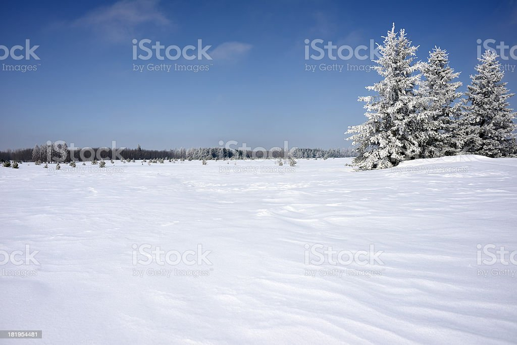 Frozen In Time stock photo