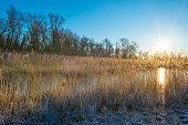 Frozen lake in the light of sunrise below a blue sky in winter