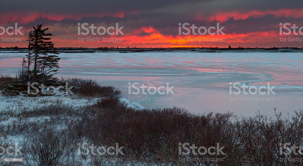 frozen lake on tundra stock photo