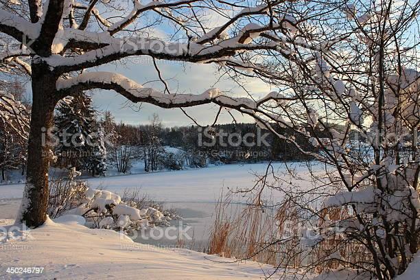 Photo of Frozen lake, winter