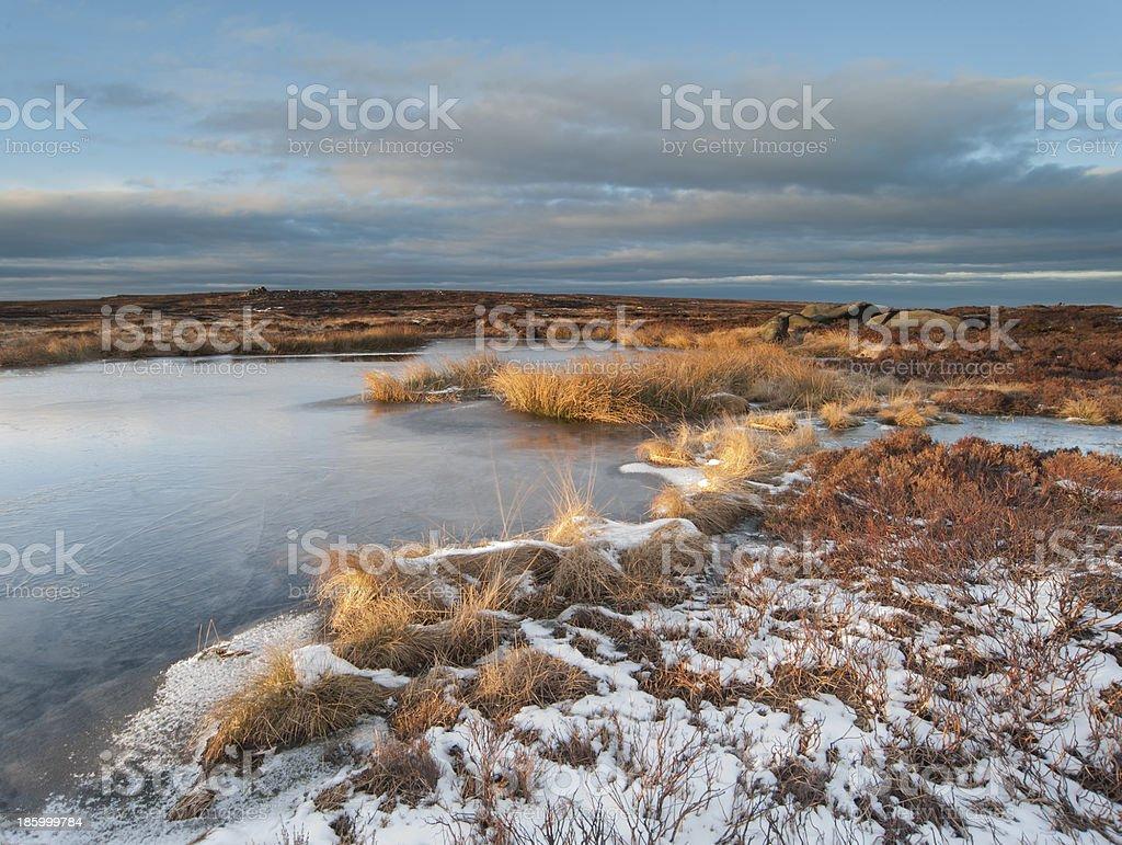 frozen moorland peat pool stock photo