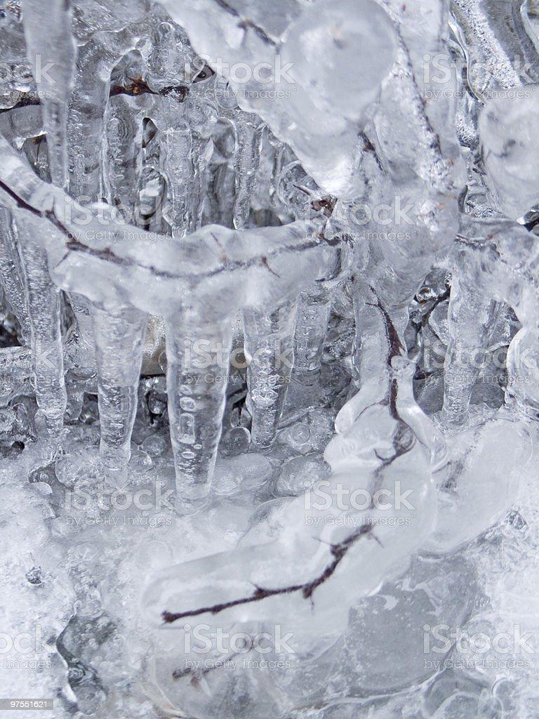 Frozen usine photo libre de droits