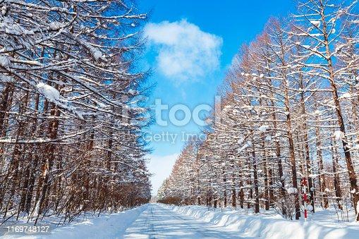 Hokkaido, Asahikawa, Asia, Biei Town, Furano Basin