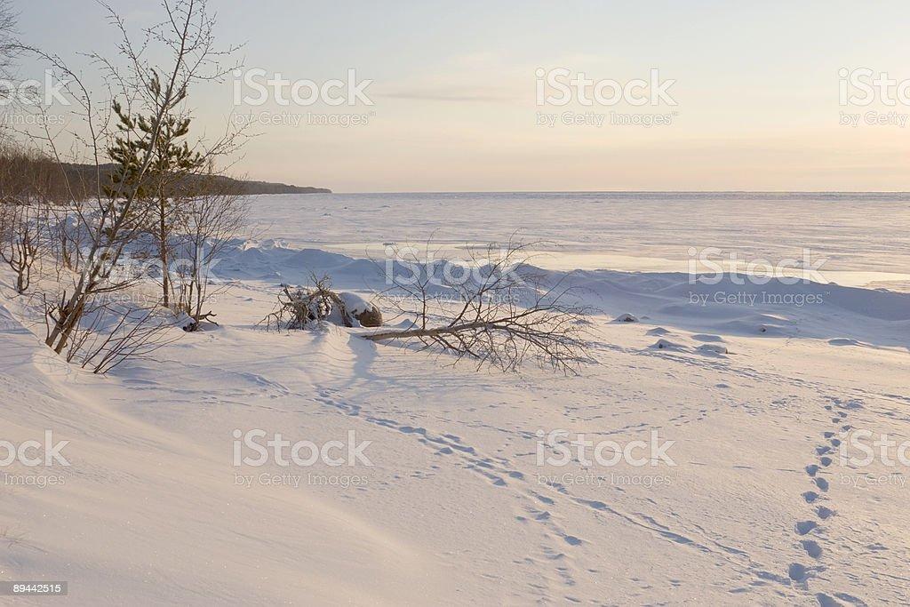 frozen la mer photo libre de droits